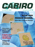 Cabiro_34.jpg